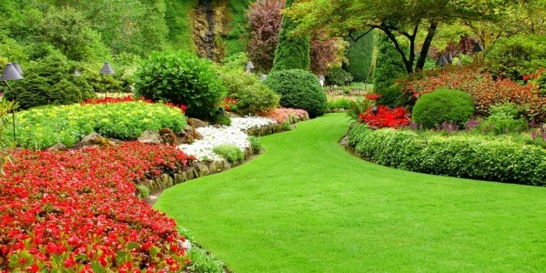 Lawn care howell mi for Garden care maintenance